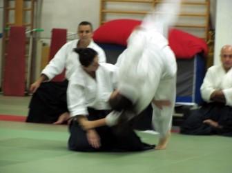 aikido_auxilium_2013