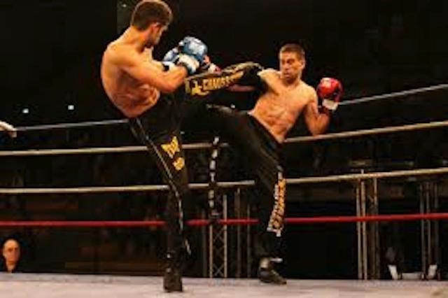 2014_fight games