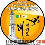 Lanterna taekwondo: il logo