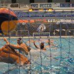 Recco e Partizan: sfida Champions