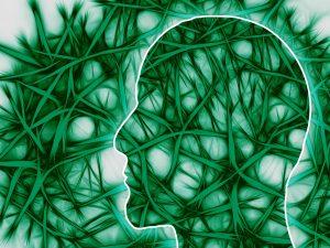Il cervello del movimento
