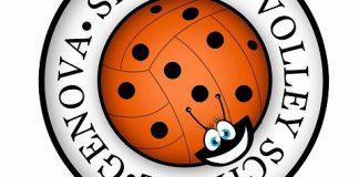 Serteco Volley School: il logo
