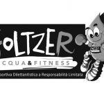 Foltzer: logo