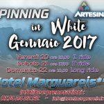 spinning_white