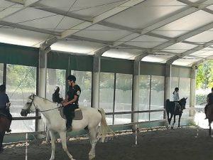 A Rapallo i ragazzi diabetici del Gaslini imparano l'equitazione