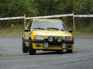 Marco Cotugno al Rally Valli Vesimesi Historic