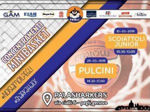 Basket Pegli ospita due concentramenti minibasket a marzo