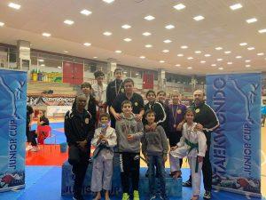 Allenamenti online per la Lanterna Taekwondo