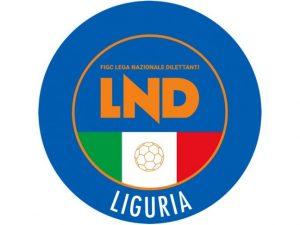 Eccellenza e Serie C1 calcio a 5: sabato e domenica le finali