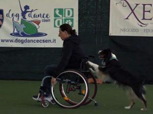 Antonia Brigati e Sophie: Dog Dance Internazionali!